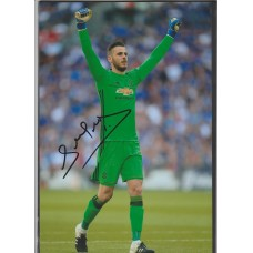 Signed Photo of David De Gea the Manchester United footballer