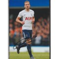 Signed photo of Harry Kane the Tottenham Hotspur footballer.