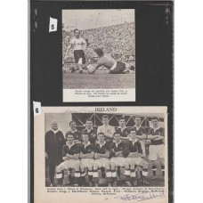 Ireland 1954 Team picture signed by Gregg and McParland